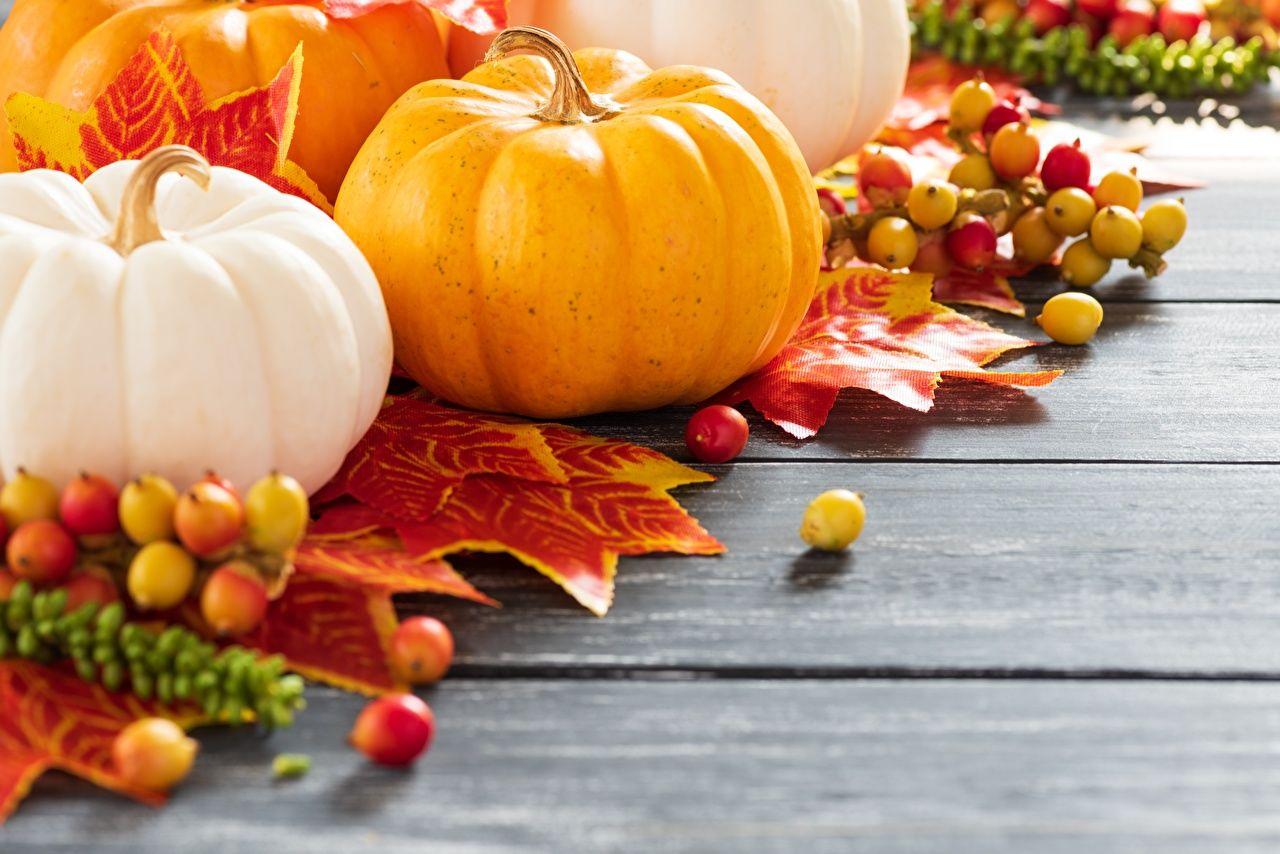 Вкусные и полезные блюда из тыквы: пошаговые рецепты приготовления лакомств для здоровья всей семьи