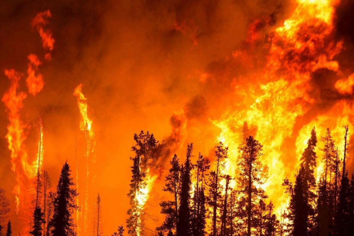 Лесной пожар вплотную подошел к ядерному центру РФ к городу Саров