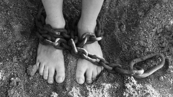 Шокирующие факты: Нацполиция Украины зафиксировала попытки торговли детьми