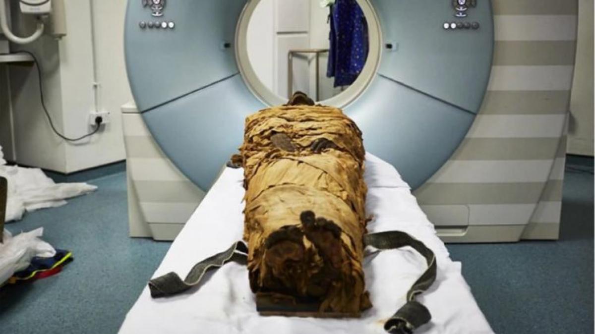 Ученым удалось воспроизвести голос древнеегипетской мумии жреца, видео
