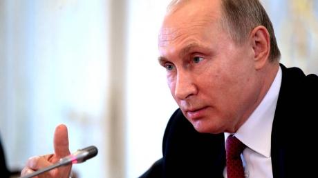 россия, путин, закарпатье, кремль, берегово, паспорта, венгрия, сийярто