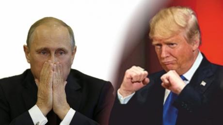 AP: Трамп и Путин могут встретиться в Германии в рамках саммита G20 уже на следующей неделе