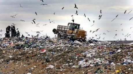 Львовский мусор докатился до Житомирщины: полиция задержала фуру с отходами из Львова, опубликованы фото