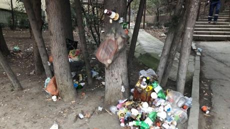 """Горы мусора прямо посреди улиц: блогер показала исконно """"ру***ий"""" пейзаж  из оккупированного Крыма – удручающие кадры"""
