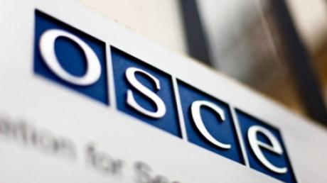 Ассамблея ОБСЕ не приняла в свои ряды делегата из Крыма