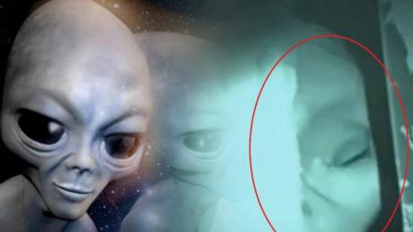Впервые показали, как выглядят пришельцы из Зоны 51: это даже пострашнее Нибиру - фото