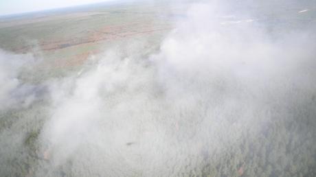 Авиация ГСЧС в боевой готовности: в Сети появились эксклюзивные видеокадры тушения масштабного пожара в Чернобыльской зоне отчуждения