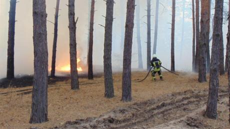 Пожары в Луганской области: власти пояснили, как к этому причастны боевики