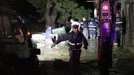 Наводнение в Тбилиси: по улицам разгуливают сбежавшие из зоопарка бегемот и медведь