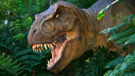 Vespersaurus paranaensis, динозавр, животные, хищник, вся правда, сенсация, находка, подробности, общество, ученые, наука