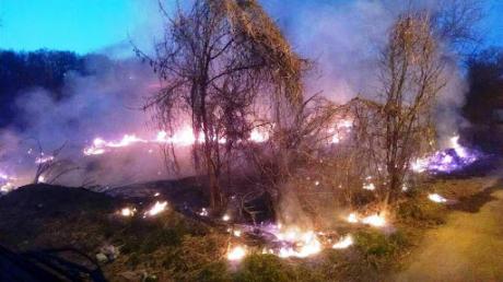 """""""К зиме выгорит вся страна"""", - спасатели в Украине выступили с важным заявлением"""