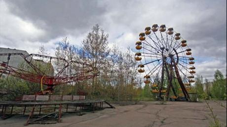 чернобыль, катастрофа, дикие животные
