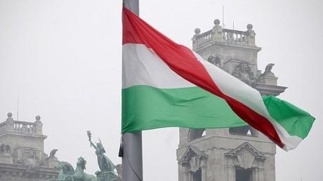 украина, венгрия, менцер, мид венгрии, скандал, консул, Берегово.