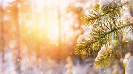 Погода в Украине зимой 2020-2021: аномальные температуры и бесснежье