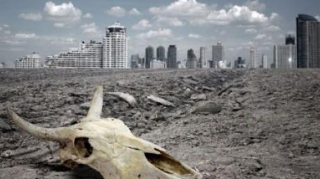 Конец света, предсказания, гибель животных, цивилизация, смерть, апокалипсис, точная дата, вся правда, сенсация, подробности, общество