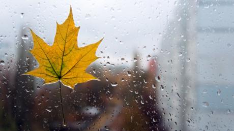 Штормовой ветер, дожди и резкое похолодание: синоптики предупредили о непогоде в Украине