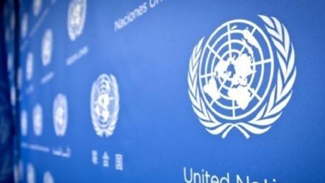 Кагарлык, Изнасилование, ООН, Заявление, СМИ.