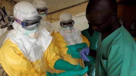 СМИ: вакцина от вируса Эбола ZMapp успешно испытана на обезьянах
