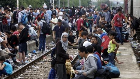мигранты, беженцы ес, ливия, италия, эмигрант, население, африка