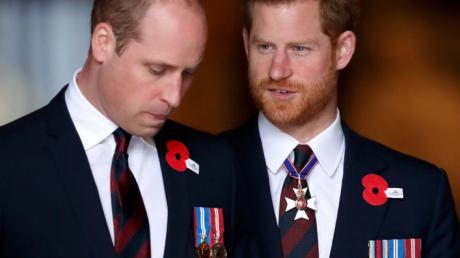 Принцы Уильям и Гарри начали делить деньги своей матери принцессы Дианы