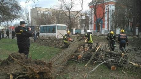 происшествия, николаев, погода, пострадавшие, дети, фото, видео