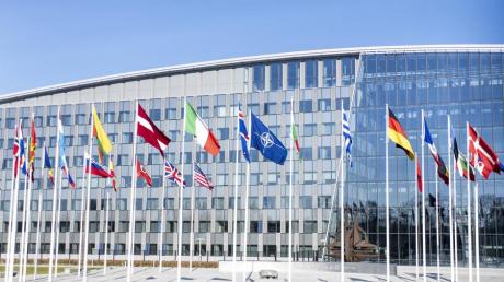 Венгрия, Украина, США, НАТО, языковой закон, новости, происшествия