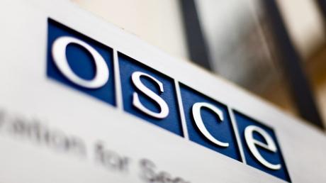 Не повелись на пропаганду: в ПА ОБСЕ одобрили резолюцию с призывом к России вернуть Крым и убраться из Донбасса