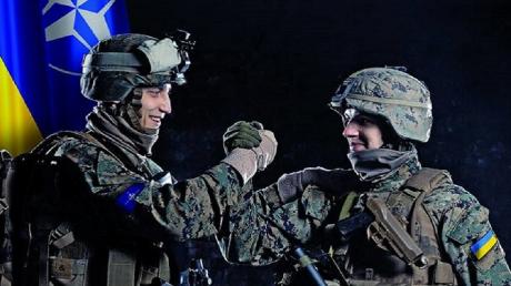 законопроект, принятие, воинские звания, стандарты