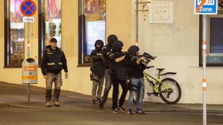 Теракт в Вене: СМИ уверяют, что задержаны граждане России