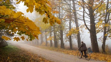 Заморозки и дожди: погода украинцев в ближайшие дни не обрадует