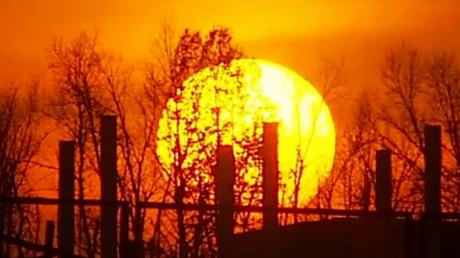 На Солнце аномально снизилась активность: прогноз ученых, чем это грозит человечеству