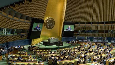 Донбасс, Война, ООН, Украина, Реакция.