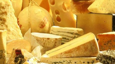 Роспотребнадзор: Россия запретила экспорт сыра из Польши