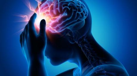 Ученые на пороге нового открытия: мозг вне тела может жить больше 25 дней