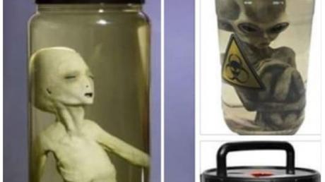 Экс-сотрудник крымской секретной лаборатории ʺНораʺ почти 30 лет в тайне хранил эмбрион пришельца