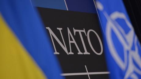 Выбор Альянса: союзники НАТО могут отложить получение членства Украиной на срок до 10 лет или рискнуть и спровоцировать РФ на новую волну агрессии - Хербст