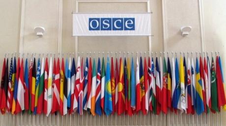 Парламентская ассамблея ОБСЕ утвердила окончательное решение по Крыму