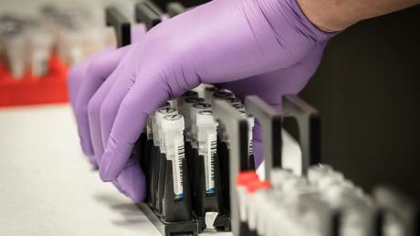 Вакцина от коронавируса: СМИ узнали, к чему готовятся в США