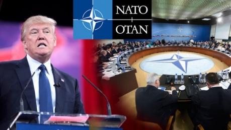 новости, США, НАТО, Трамп, Черногория, скандал, заявление, статья 5, договор, Третья мировая война, ответ, реакция