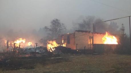 Масштабные пожары в Луганской области: людей массово вывозят, есть жертвы
