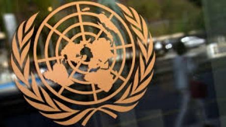 СБ ООН примет собственную резолюцию по минским договоренностям