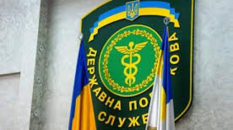 Яценюк инициировал проверку фискальной службы. Руководители отстранены от работы