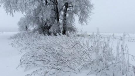 Ученый напугал землян наступлением ледникового периода на планете: конец близок