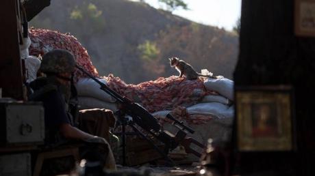"""""""Утро началось с обстрелов"""", - в Сети опубликовали трогательное фото с передовой"""