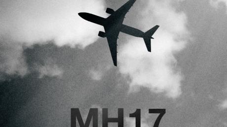 Порошенко: расследование катастрофы MH17 будет осуществляться в рамках национальной юрисдикции Нидерландов