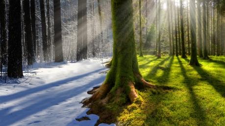 новости, мир, планета, Земля, человечество, глобальное потепление, изменения климата, вечная зима, вечное лето, человечество, катастрофа, угроза