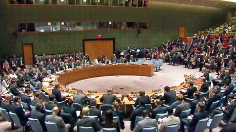 Всего две страны: стало известно, кто поддержал российскую резолюцию ООН по Сирии - подробности и кадры