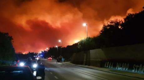 Месть России за поддержку Украины? В районе популярного в Хорватии курорта Тучепени произошла вспышка лесных пожаров: более 800 туристов эвакуированы