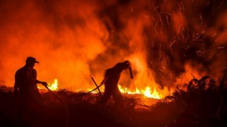 """Мир потрясен тем, как Путин """"тушит"""" пожары в Сибири, россияне молят о помощи: """"Солнце красное, задыхаемся!"""""""
