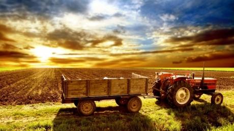 Кабмин хочет заложить на поддержку сельского хозяйства миллиард гривен в следующем году